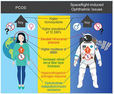 Genetics, Vitamins And Astronaut Eyes